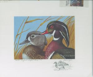 MARYLAND #6 1979 STATE DUCK STAMP PRINT WOOD DUCKS Pencil Remarque John Taylor