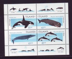 Iceland Sc 876a 1999 Marine Mammals stamp sheet mint NH