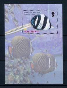 [40598] Montserrat 2004 Marine Life Fish MNH Sheet