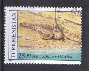 Turkmenistan 1993 used WWF Caspian seal 25r.    #