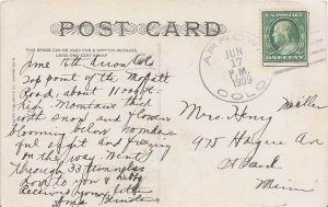 United States Colorado Arrow 1909 doane 3/5  1905-1915  PC.