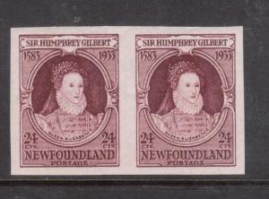 Newfoundland #224a Extra Fine Never Hinged Imperf Pair