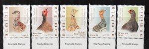 NAMIBIA - BIRDS - 2018 -