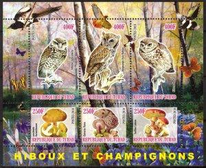 Chad 2010 Birds Owls Mushrooms (1) MNH Cinderella !