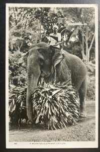 1957 Colombo Ceylon RPPC postcard Cover To Paris France Working Elephant