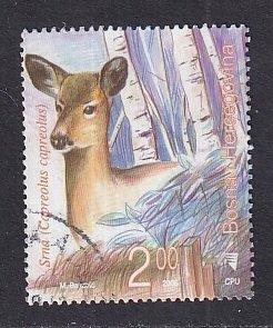 Bosnia and Herzegovina ( Bosniak admin)  #557   used  2006 wild animals  2m