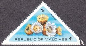 Maldive Islands # 557 used ~ 1 l Sea Urchins