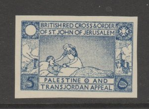 Palestine - Charity Aid Revenue Middle East Cinderella Stamp 6-10-H mnh gum
