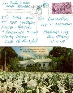 Bermuda, Picture Postcards