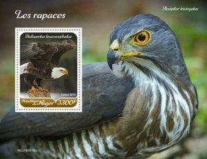 Niger - 2019 Raptor Birds on Stamps - Stamp Souvenir Sheet - NIG190519b