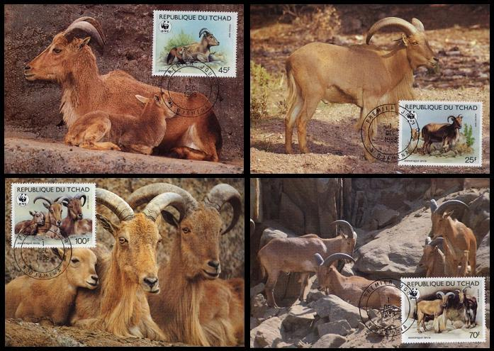 Chad WWF Barbary Sheep 4 official Maxicards