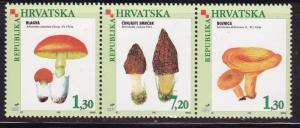 Croatia 1998 Mushrooms Strip of 3    VF/NH