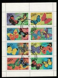 Butterflies, Oman (RT-784)
