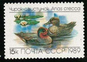 Bird Anas Crecca, 15 kop, 1989, MNH ** (T-7488)