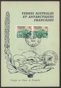FAAT FRENCH ANTARCTIC 1960 postcard ISLE ST PAUL ET AMSTERDAM cds.........53542A