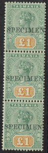 TASMANIA 1892 QV TABLET 1 POUND MNH ** SPECIMEN STRIP WITH CERTIFICATE