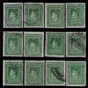 NEWFOUNDLAND 1938 DEALER LOT 12 X 2c #245 (Perf 13.5) KING GEORGE VI STAMPS