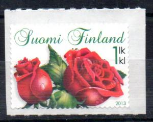 FINLAND - ROSES - 2013 -
