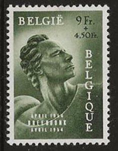 Belgium B560 (M)