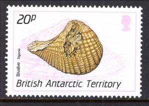 British Antarctic Territory 163 Seashell MNH VF
