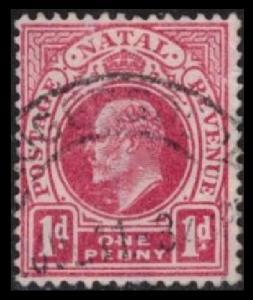 NATAL 1902 SC #82, 1p KING EDWARD VII, USED