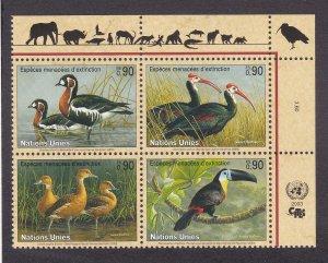 U.N. - Geneva # 410a, Endangered Species, Birds, NH, Block of Four, 1/2 Cat.