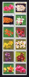Suriname Sc# 1423 MNH Orchids 2011 (Block of 12)