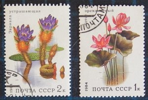 Flowers, (2512-Т)