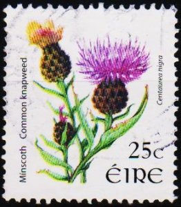 Ireland. 2006? 25c Fine Used