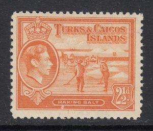 Turks & Caicos Islands, Sc 83 (SG 199), MHR