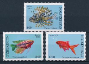 [40638] Uzbekistan 2010 Marine Life Fish MNH