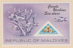 Maldive Islands Scott #565 Stamp - Mint NH Souvenir Sheet