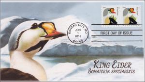 SC 4992, 2015, Coastal Birds, King Eider, FDC, BW, 15-170