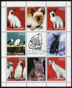 BATUM SHEET DOMESTIC CATS