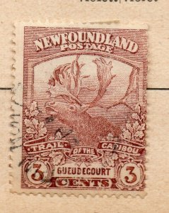 Newfoundland 1898-1901 Early Issue Fine Used 3c. NW-11947