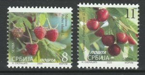 Serbia 2020 Berries 2 MNH stamps