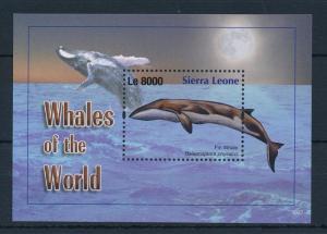[28288] Sierra Leone 2011 Marine Life Whales MNH Sheet