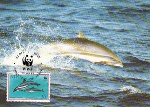 Niue 1993 Maxicard Sc #652 50c Fraser's dolphin WWF