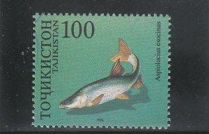 Tajikistan  Scott#  91e  MNH  (1996 Pike Asp)