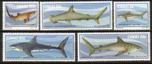 Ciskei - 1983 Sharks Set MNH** SG 38-42