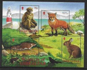 2002    GIBRALTAR  -  SG.  MS  1015  -  WILDLIFE   -  MNH