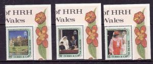 Turks & Caicos-Sc#531-3-unused NH set-Royalty-Princess Diana-1982-