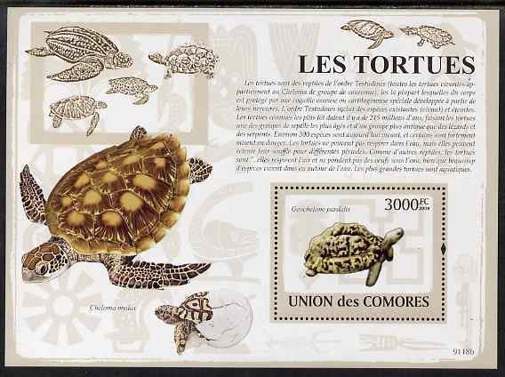 Comoro Islands MNH S/S Turtles Reptiles 2009