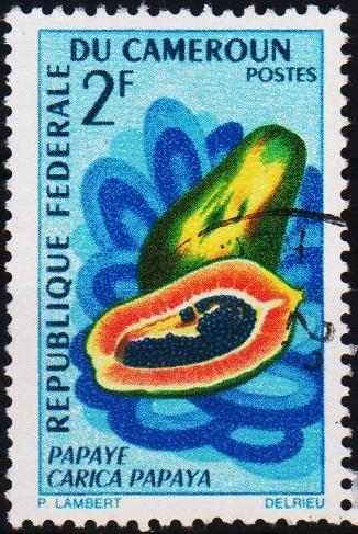 Cameroun. 1967 2f. S.G.464 Fine Used