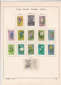 poland 1962,  flowers + jacek malczewski stamps page ref 17268