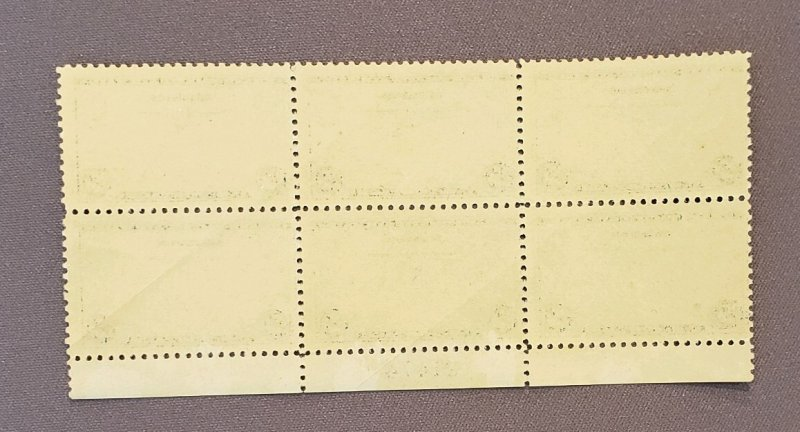 C20, Air Mail, Mint Plate Block of 6, gum skips and crease on back (see photo)
