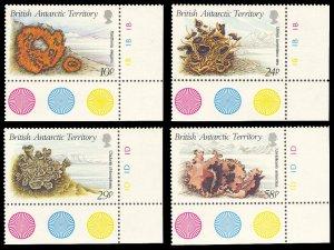 British Antarctic Territory 1989 Scott #149-152 Mint Never Hinged