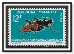 Madagascar #383 Long-horned Beetle MNH