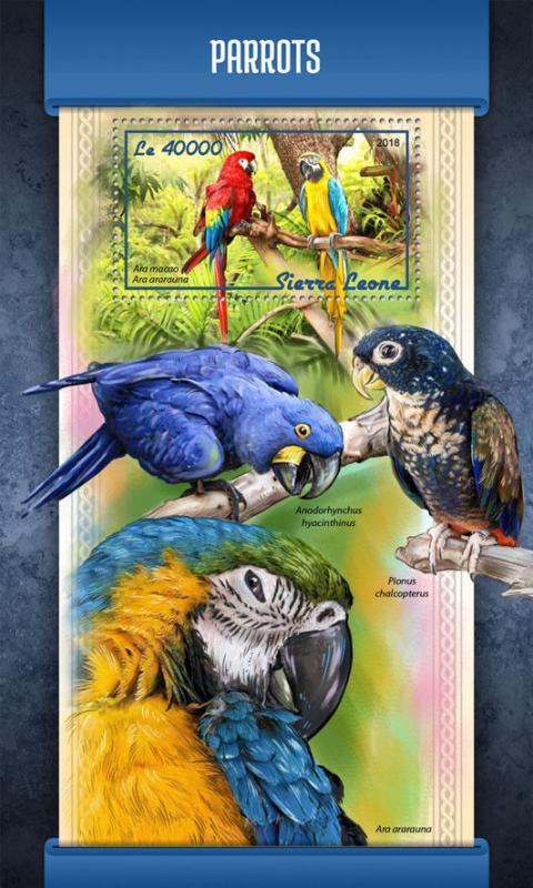 Sierra Leone 2018 MNH Parrots Scarlet Macaw 1v S/S Macaws Parrot Birds Stamps