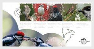 Stamps 2020 Netherlands. - Forest Heathland Birds - First Day Co
